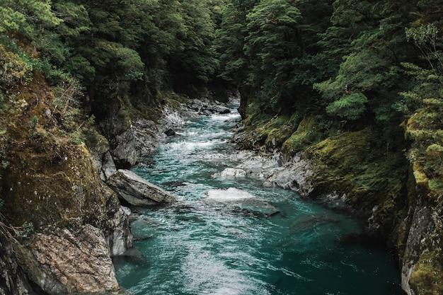 森の木々に囲まれた強い流れのある岩だらけの川の美しいショット 無料写真