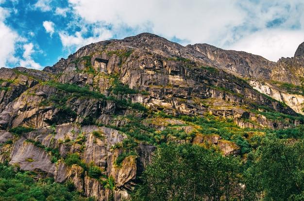 ノルウェーの草で覆われた高い岩の美しいショット 無料写真