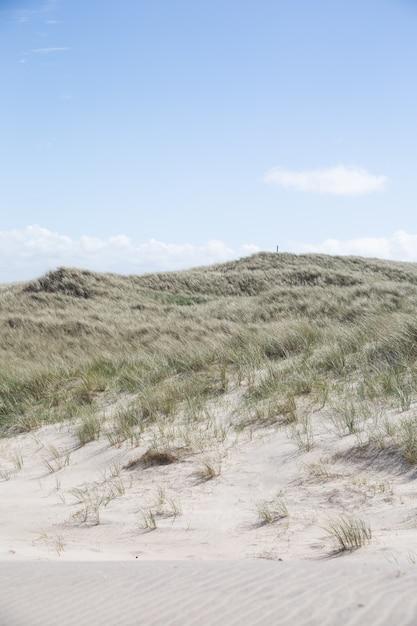 Красивый снимок холмов, покрытых травой под ясным голубым небом Бесплатные Фотографии