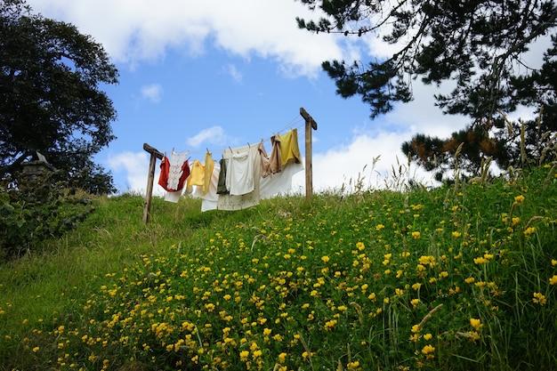 青い空の下の庭で乾く新しく洗った服の美しいショット 無料写真