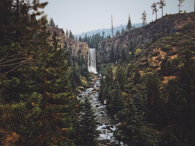 Красивый снимок водопада тумало посреди леса Бесплатные Фотографии