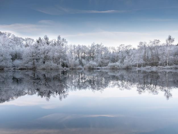 푸른 하늘 아래 눈 덮인 나무를 반영하는 물의 아름다운 샷 무료 사진