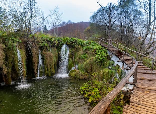 크로아티아 플리트 비체 호수 국립 공원의 목조 다리의 아름다운 샷 무료 사진