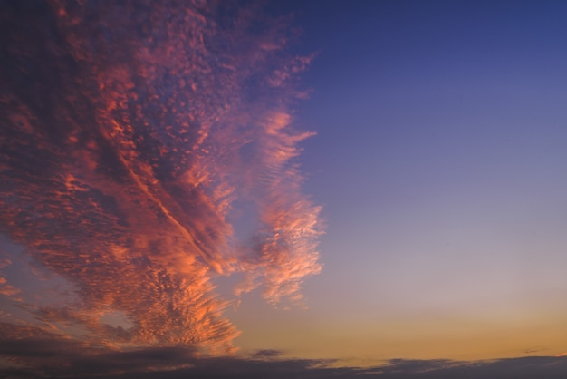 Beautiful shot of a pink and purple clouds in the sky on clear blue background Free Photo