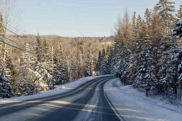 Bello colpo di una strada stretta nevosa nella campagna Foto Gratuite