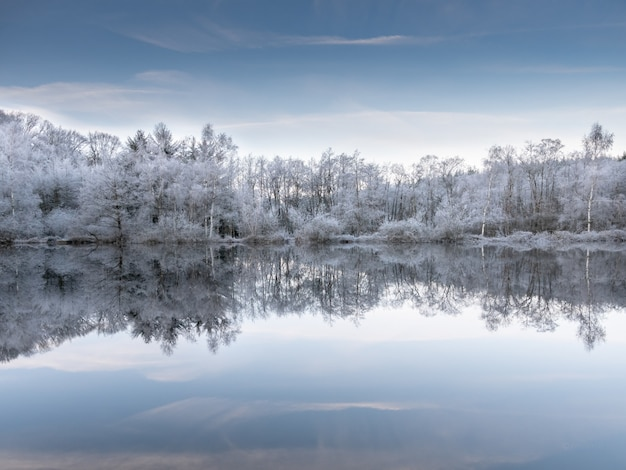 Beautiful shot of the water reflecting the snowy trees under a blue sky Free Photo