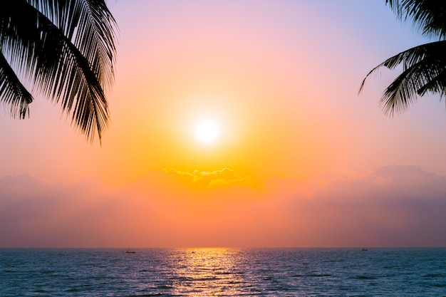Beautiful silhouette coconut palm tree on sky neary sea ocean beach at sunset or sunrise time Free Photo