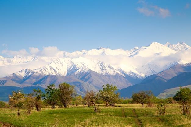 아름다운 봄, 여름 풍경. 무성한 푸른 언덕, 높은 눈 덮인 산. 봄 개화 허브. 피는 나무. 푸른 하늘과 흰 구름. 프리미엄 사진