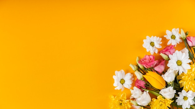 Beautiful spring flowers arrangement with copy space Free Photo