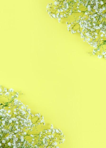 Beautiful spring flowers frame background Premium Photo