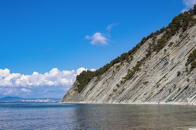 아름 다운 여름 풍경, 구름과 밝은 푸른 하늘, 나무와 가파른 절벽과 야생 돌 해변. 겔 렌지 크의 휴양 도시. 러시아, 흑해 연안 프리미엄 사진