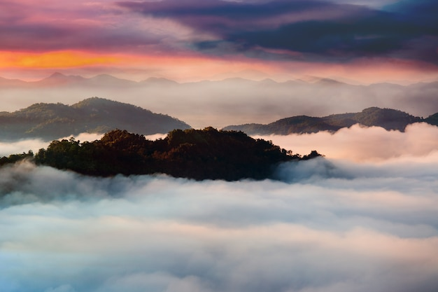 Beautiful summer landscape in the mountains with the sunset Premium Photo