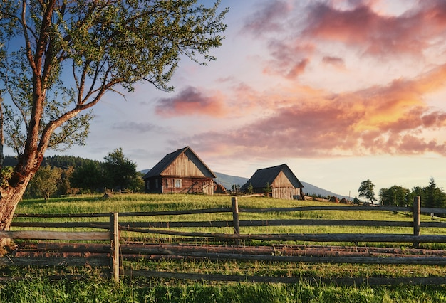 Beautiful summer mountain landscape at sunshine. view of the meadow fenced fence. rural landscape Premium Photo