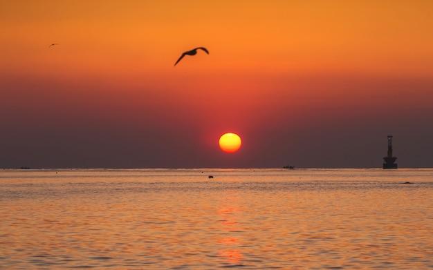 Beautiful sunrise at haeundae beach, busan, south korea. Premium Photo