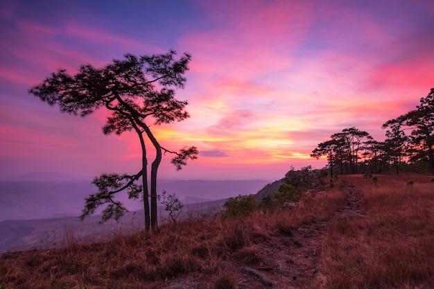 Красивый закат на высокой горе Premium Фотографии