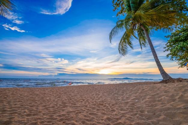 Beautiful sunset in the sea Premium Photo