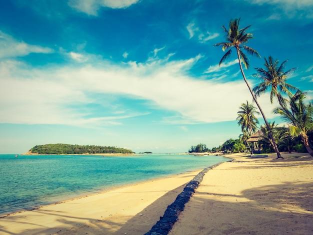 Красивый тропический пляж и море с кокосовой пальмой Бесплатные Фотографии