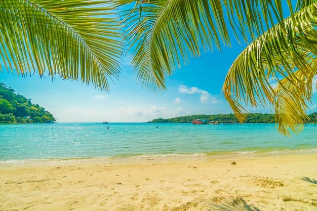 美しい熱帯のビーチと海 | 無料の写真