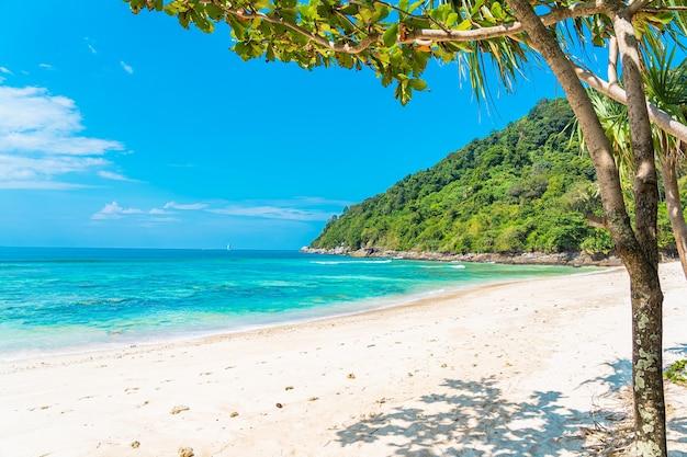 青い空の白い雲の周りにココナッツと他の木と美しい熱帯のビーチの海の海 無料写真