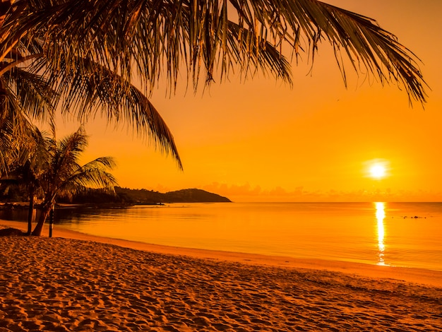 Beautiful tropical beach sea and ocean with coconut palm tree at sunrise time Free Photo