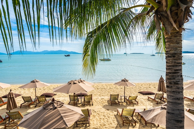 Beautiful tropical beach sea and ocean with coconut palm tree  and umbrella and chair on blue sky and white cloud Free Photo