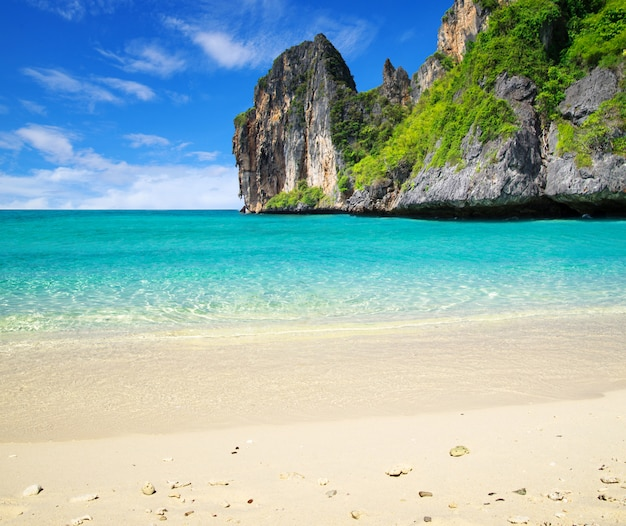 Exotic Beach: Beautiful Tropical Beach With Mountains