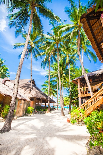 Beautiful tropical beach with palm trees, white sand, turquoise ocean water and blue sky Premium Photo