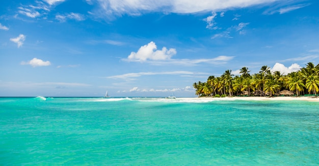 Beautiful tropical beach with white sand, coconut trees and turquoise sea water Premium Photo
