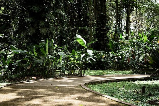 Beautiful tropical garden long shot Free Photo