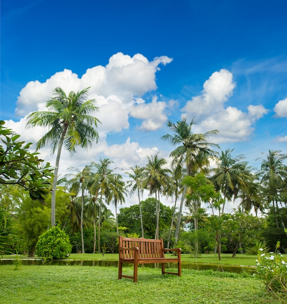 Beautiful tropical garden with palm trees Premium Photo