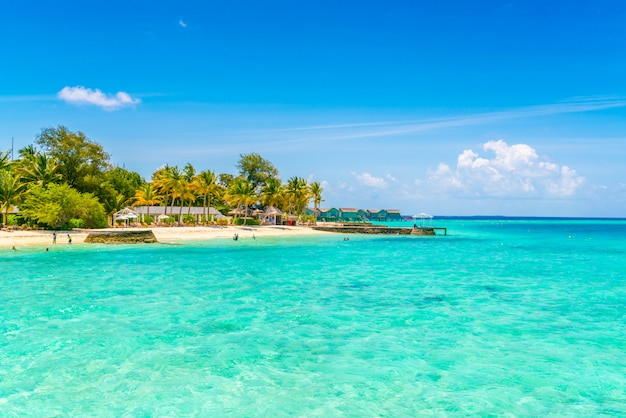 Beautiful tropical maldives island with white sandy beach and sea . Premium Photo