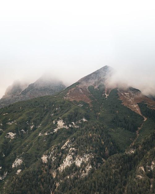 Красивый вертикальный снимок вершины, покрытой лесными деревьями и туманом на вершине. Бесплатные Фотографии