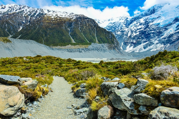 Beautiful view during walk to glacier in mount cook national park, south island, new zealand Premium Photo