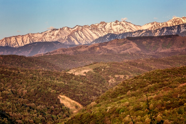 Beautiful view of the mountains in the pink light of sunset. Premium Photo