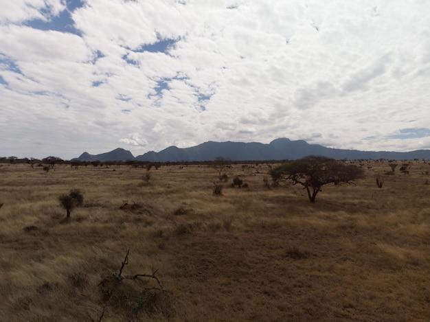 Прекрасный вид на поле под великолепными облаками на западе цаво, таита, кения Бесплатные Фотографии