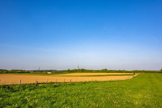 Прекрасный вид на сельскохозяйственное поле с ясным горизонтом в яркий солнечный день Бесплатные Фотографии