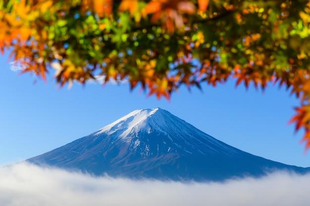 Прекрасный вид на гору фудзи-сан с красочными красными кленовыми листьями и зимним утренним туманом в осенний сезон на озере кавагутико, лучшие места в японии, путешествия и ландшафтная концепция природы Premium Фотографии