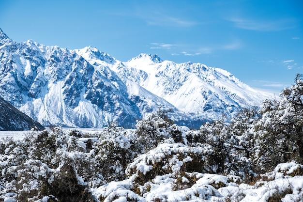 雪の日の後、雪に覆われたマウントクック国立公園の美しい景色。 Premium写真