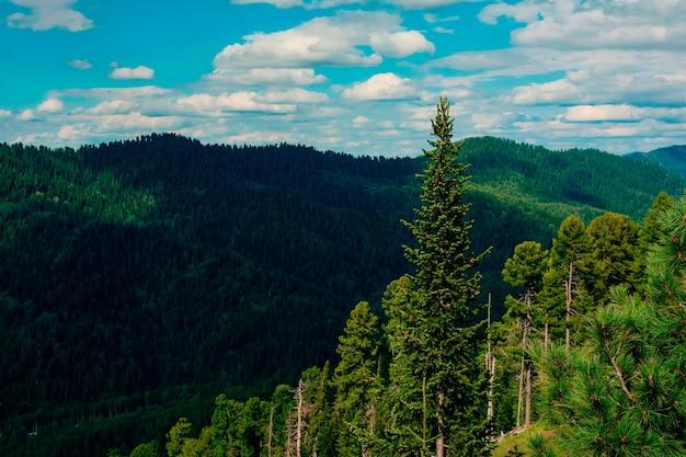 山と夏の空の美しい景色 Premium写真