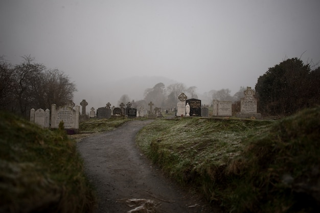 Beautiful view of an old graveyard surrounded by trees captured in the foggy weather Free Photo