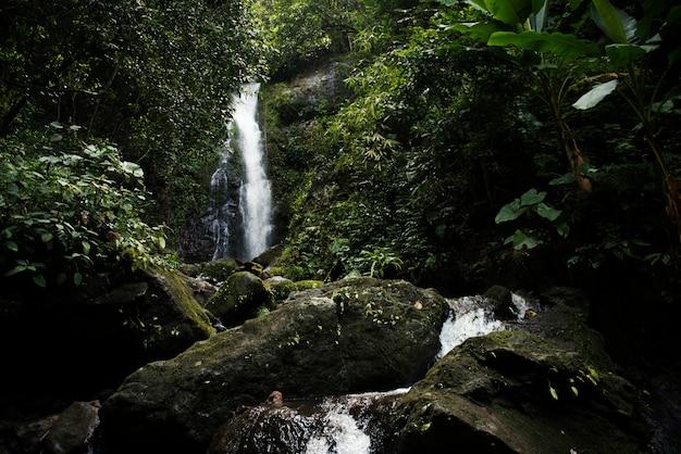 Beautiful view of a waterfall Free Photo