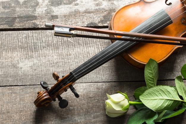Beautiful violin Premium Photo