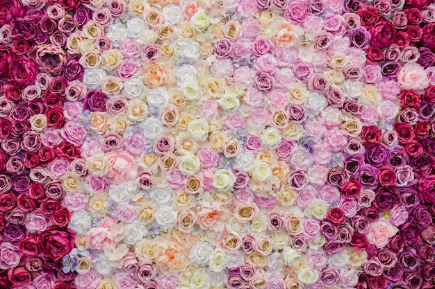 Beautiful wall decorated with roses Free Photo