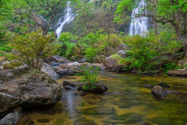The beautiful waterfall in deep forest at khlong lan national park Premium Photo