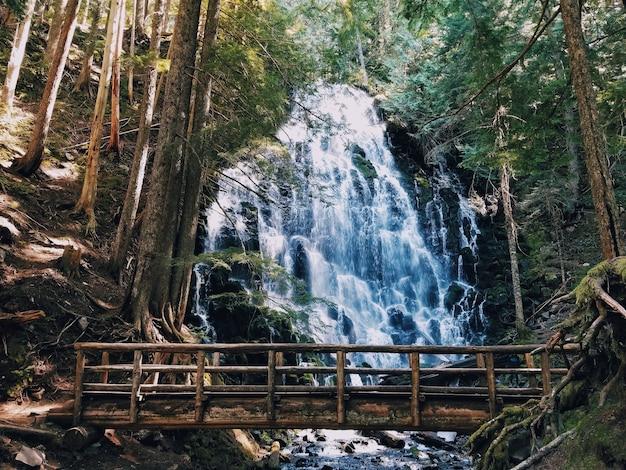 Bella cascata e un piccolo ponte di legno Foto Gratuite