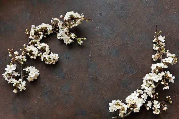Beautiful white flowering cherry tree branches on dark table background Premium Photo
