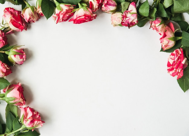 Beautiful white with flowers on the edges Premium Photo