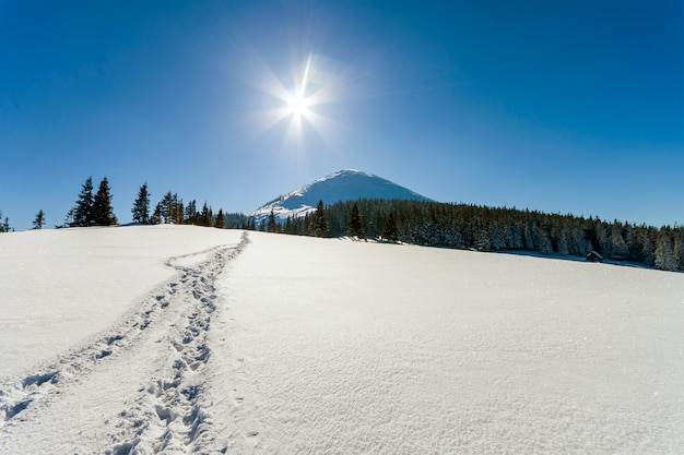 Beautiful winter landscape in the mountains Premium Photo