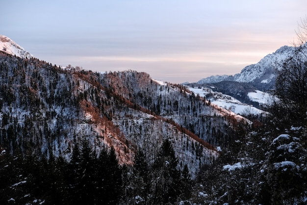 高山の木で覆われた山の斜面の美しい冬の風景 無料写真