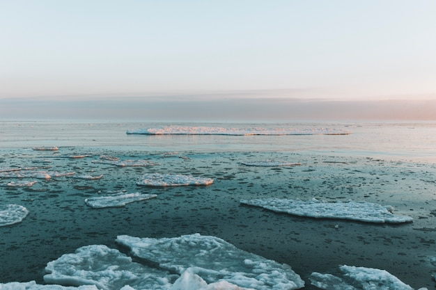 Beautiful winter sea landscape with floating ice fragments Premium Photo